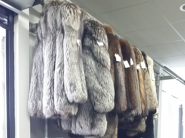 Bricker Tunis Pre-Owned Furs 2